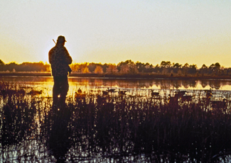 Hunter at dawn overlooking a marshy area