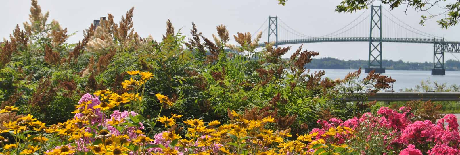 Flower gardens with the 1000 Islands Bridge in the background